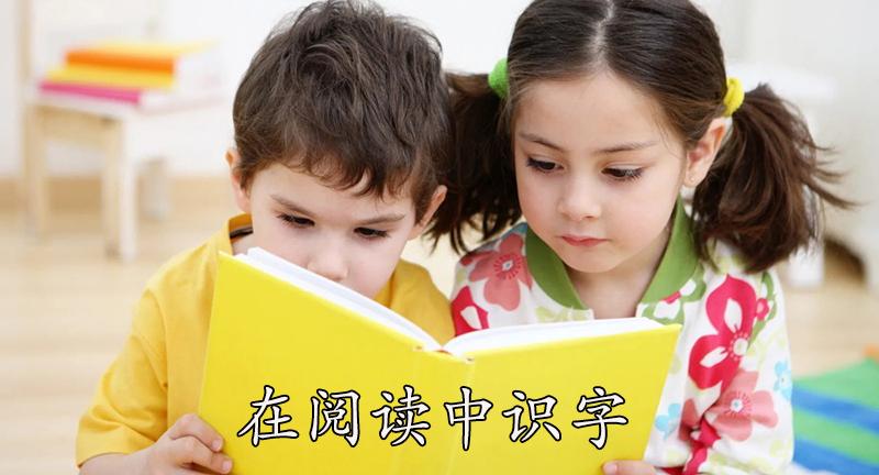 在阅读中识字