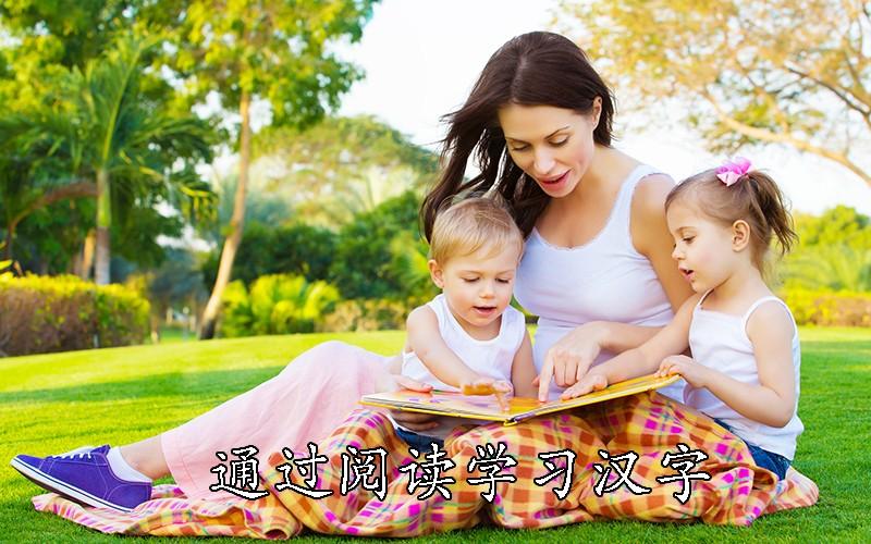 通过阅读学习汉字