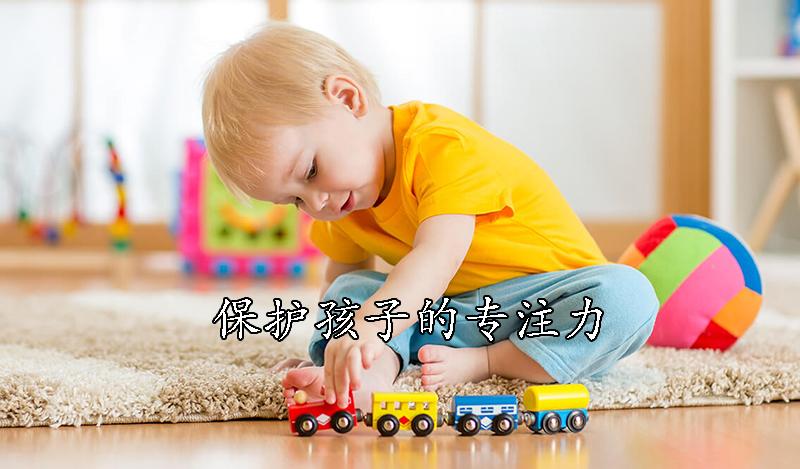 孩子的专注力是保护出来的,而不是培养出来的