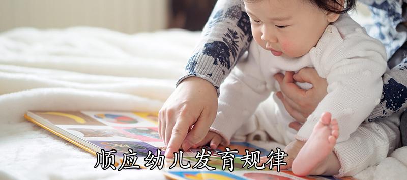 顺应幼儿发育规律