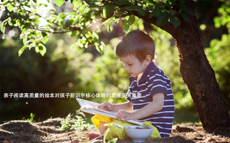 """在教孩子识字之前,家长必须了解""""前识字""""的经验。"""