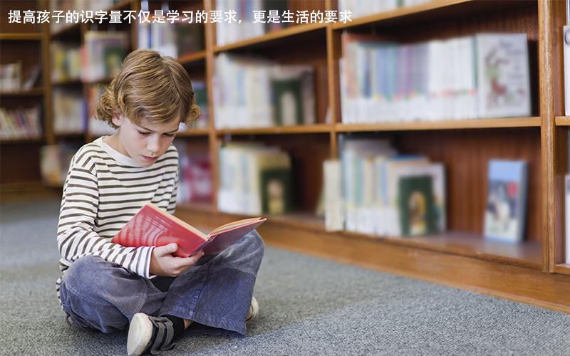 提高孩子的识字量不仅是学习的要求,更是生活的要求!