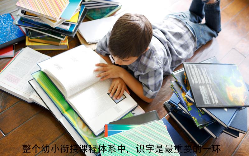识字,正确开启宝宝的阅读启蒙之旅