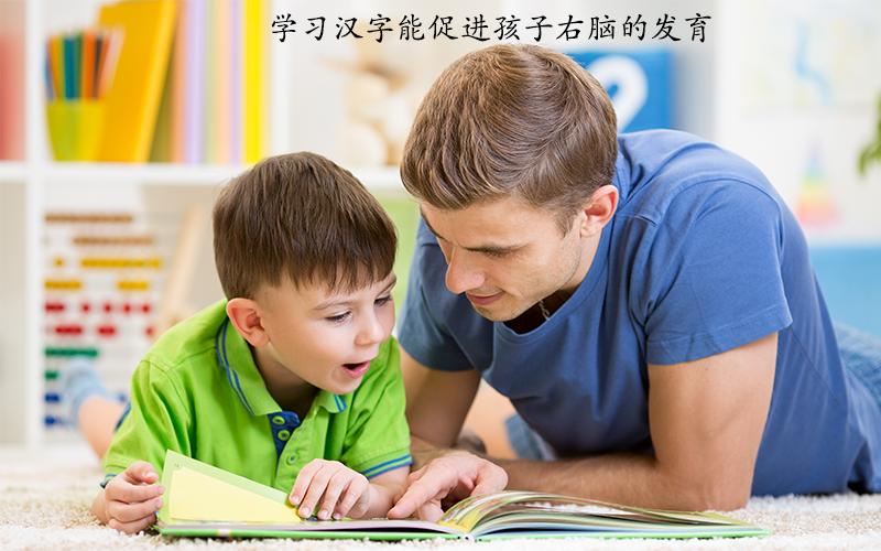 学习汉字能促进孩子右脑的发育