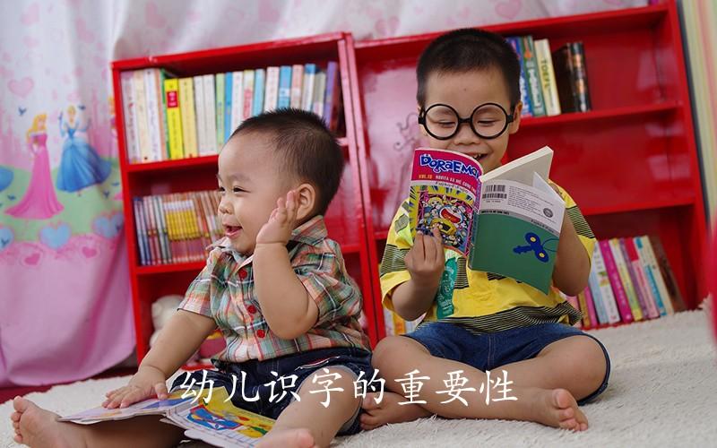这样学习识字有利于幼儿智力发育