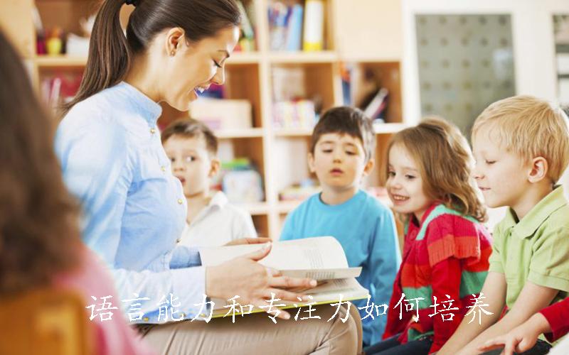 语言能力和专注力是父母千万要注意的早教内容