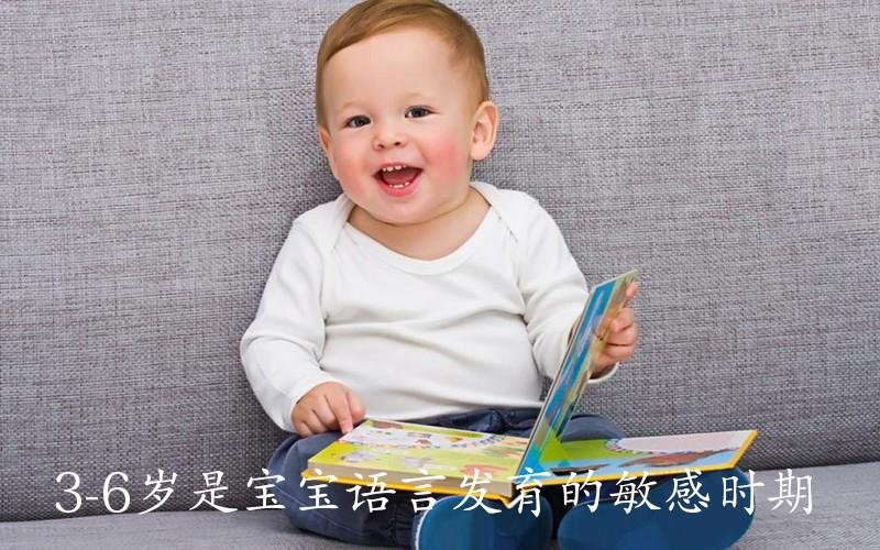 3-6岁是宝宝语言发育的敏感时期