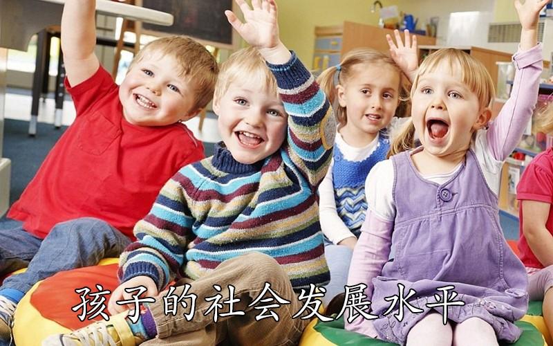孩子的社会发展水平