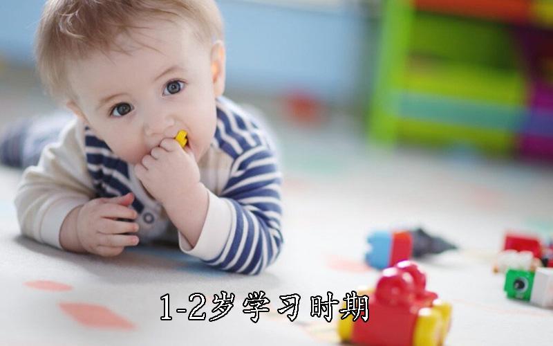 1-2岁学习时期