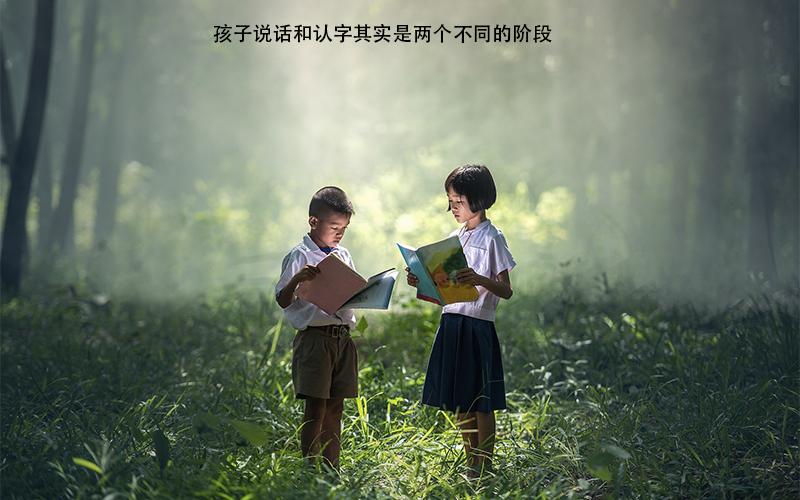 说话认字是两个不同时期,父母应该怎么去培养呢?