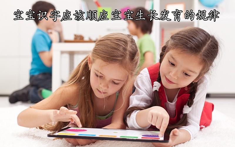 宝宝识字应该顺应他们的生长发育的规律