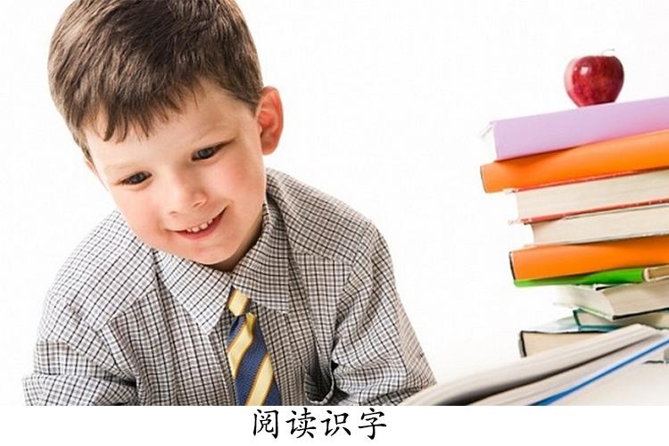 识字重在阅读